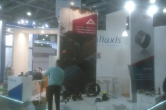 Aleaxis
